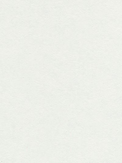 Popelieren wandplaat Torino met HPL toplaag 122x244x15